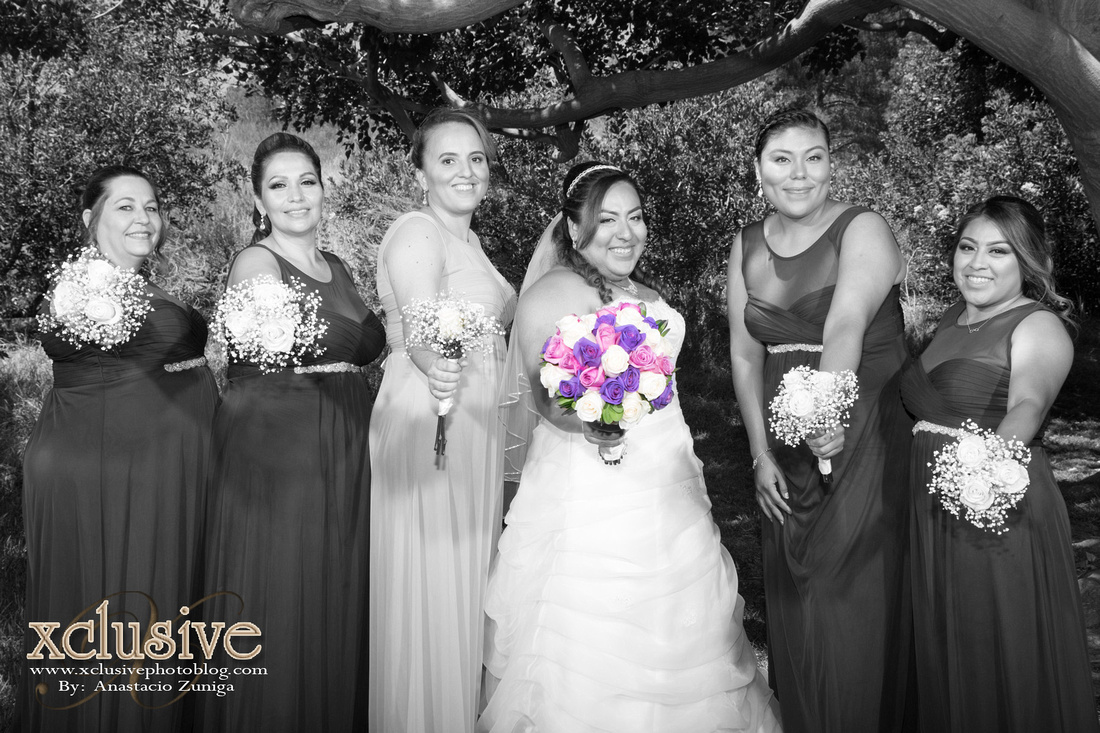 Wedding and Quinceanera photographer in los angeles,san Gabriel Valley,: Jose & Jamie favoritas-Wedding professional photographer in Los Angeles, San Bernardino, Covina, &emdash; J&J-391