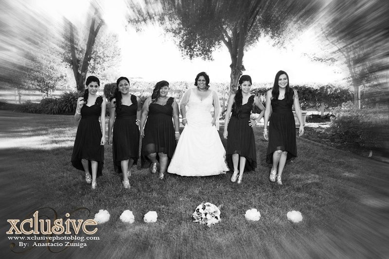 Wedding and Quinceanera photographer in los angeles,san Gabriel Valley,: Francisco & Cynthia Wedding Favoritas &emdash; F&C-380
