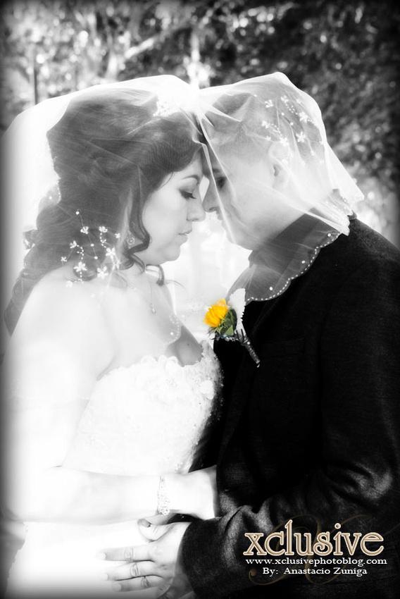 Wedding and Quinceanera photographer in los angeles,san Gabriel Valley,: Rodolfo & Sandra Evento Favoritas Wedding professional photographer in Los Angeles, La Habra, &emdash; S&R-226