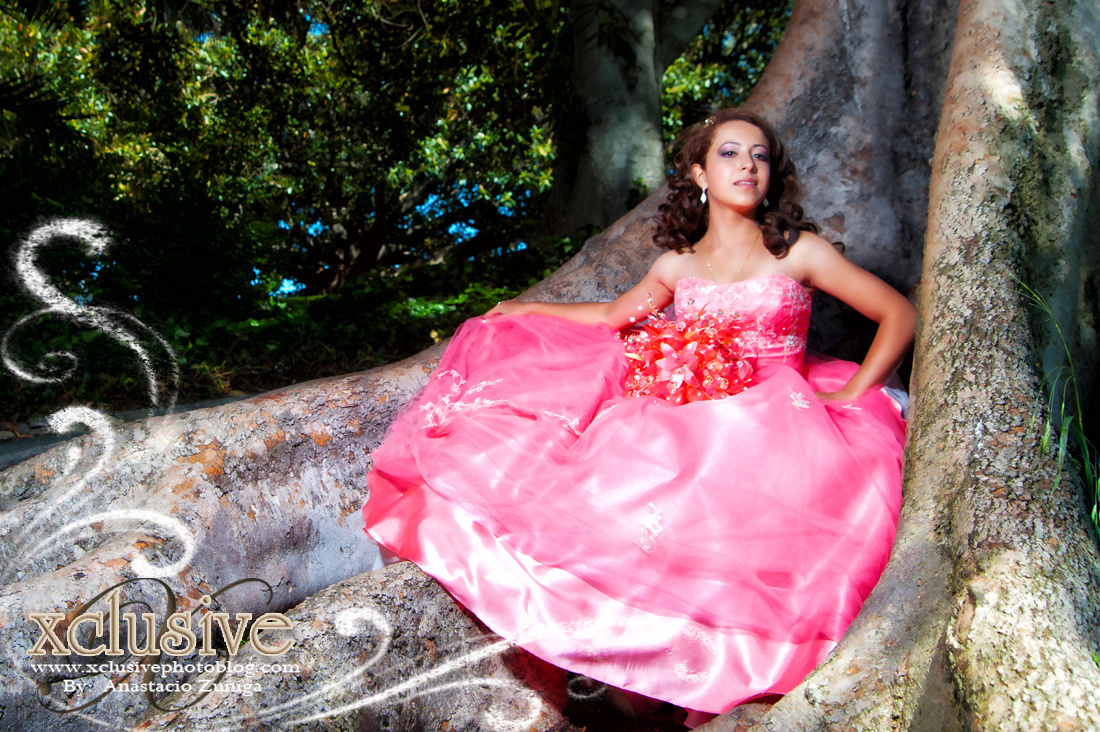 Wedding and Quinceaneras photographer in los angeles,san Gabriel Valley,: Erika Quinceanera professional photography in Los Angeles &emdash; Quinceanera Professional Photography in Los Angeles